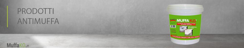 Prodotti Antimuffa: come togliere la muffa dai muri e soffitti